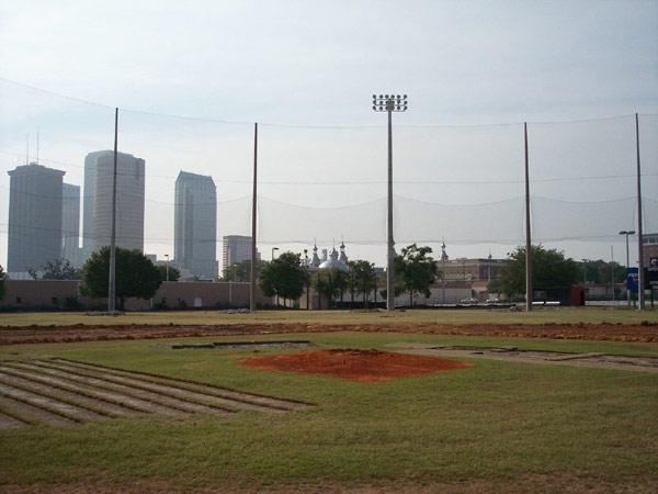 BASEBALL FIELD NETTING